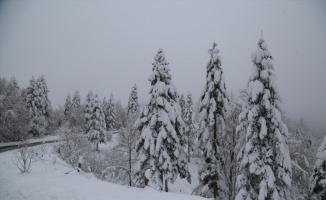 Sakarya'da vatandaşlar karın tadını çıkardı
