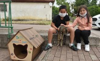 Küçük kuzenlerin hayvan dostları için barınak kulübesi