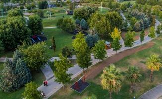 Kocaeli'de yeşil alan miktarı 23,5 milyon metrekare oldu