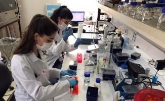 Koronavirüs aşı çalışmalarında önemli aşamaya gelindi