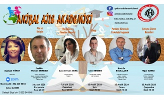 Gebze Anibal Anadolu Lisesi'nden 3A Projesi