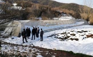 Kar yağışında hasar gören seralar yerinde incelendi