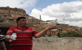 Güvercinlerin Messi'si Ronaldo'su Mardin'de! (ÖZEL HABER)