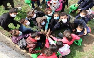 Derikli öğrencilerden okul bahçesine fidan