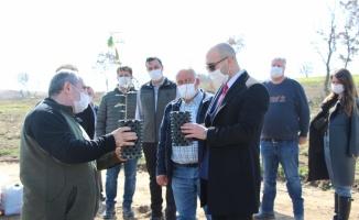 Edirne'de köylülere ek gelir sağlayacak tıbbi ve aromatik bitki ormanı kuruldu