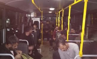 Kocaeli'de 12 Afganistan uyruklu yakalandı