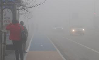 Sakarya'da yoğun sis etkili oldu