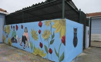 Edirne'de lise öğrencileri kedi evlerini boyadı