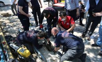 Kocaeli'de itfaiye ekipleri yavru köpeği sıkıştığı su kanalından kurtardı