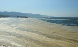 Marmara Denizi'nin birçok noktasına yayılan