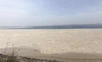 Yalova Altınova sahilinde