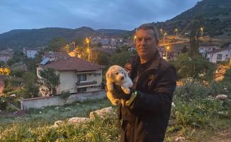 Bilecik'te otomobilin motor bölümüne giren yavru köpek kurtarıldı