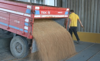 Lüleburgaz'da sezonun ilk hasat buğdayı borsaya teslim edildi