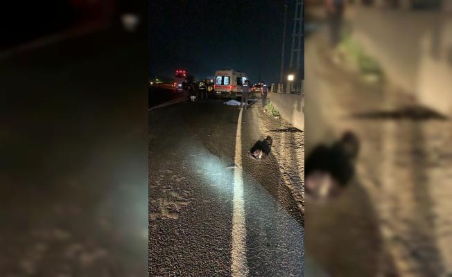 Tekirdağ'da otomobilin çarptığı yaya hayatını kaybetti