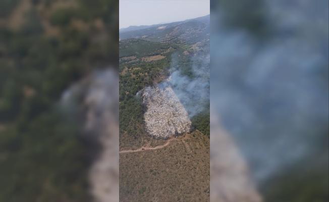 Balıkesir'de orman yangını kontrol altına alındı