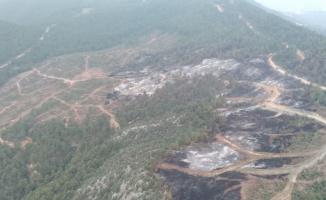 Bilecik'te soğutma çalışması süren ormanlık alandaki yangın yeniden alevlendi