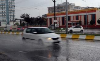 Aşırı sıcakların etkili olduğu Edirne'de yağan yağmur serinletti