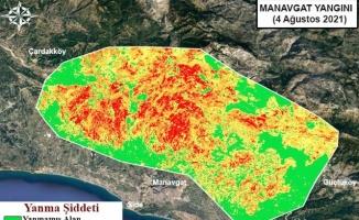 Gebze Teknik Üniversitesi, orman yangınlarının etkili olduğu alanları haritalandırdı:
