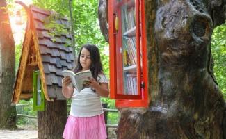 Türkiye'nin ilk orman kütüphanesi