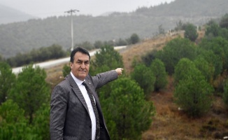 Bursa Osmangazi'de '1 Milyon Fidan' ormana dönüşüyor