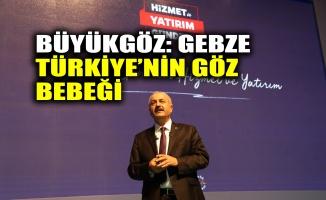 Büyükgöz: Gebze Türkiye'nin göz bebeği