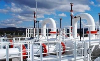 Enerji Bakanı'ndan doğal gaz anlaşması açıklaması