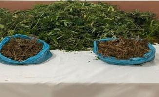 Erdek'te uyuşturucu operasyonunda 1 kişi yakalandı