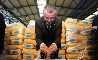 Kocaeli Büyükşehir, çiftçiye tohum desteğine başladı