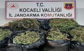 Kocaeli'de 25 kilo 685 gram kubar esrar ele geçirildi