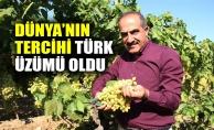 Dünya'nın tercihi Türk üzümü oldu