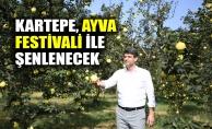 Kartepe Ayva Festivali ile şenlenecek