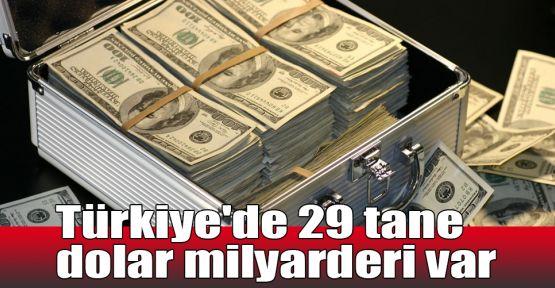 Türkiye'de 29 tane dolar milyarderi var