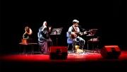 Çayırova'da, Türk Halk Müziği esintisi