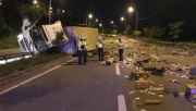 Kocaeli'de lamyüklü kamyon devrildi: 1 yaralı