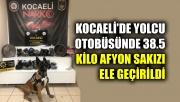 Kocaeli'de yolcu otobüsünün bagajında 38,5 kilogram Afyon sakızı ele geçirildi