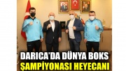 Darıca'da Dünya Boks Şampiyonası heyecanı