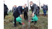 Sağlık çalışanları için ağaçlandırma çalışması